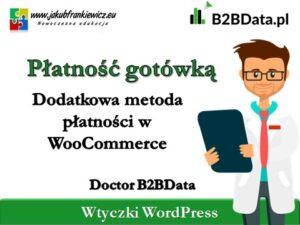 b2bdata gotowka 300x225 - Home
