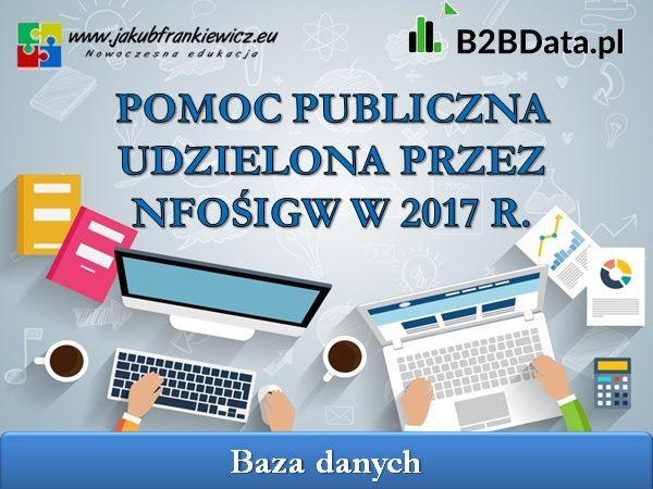 pomoc publiczna2017 600x450 - Pomoc publiczna udzielona przez NFOŚiGW