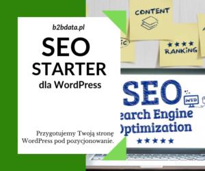seostarter 300x250 - SEO Starter dla WordPress