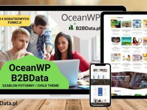 rsz b2bdata ocean szablon oferta 300x225 - OceanWP B2BData - szablon potomny