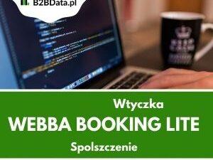 webba pl 300x225 - Webba Booking Lite - spolszczenie wtyczki